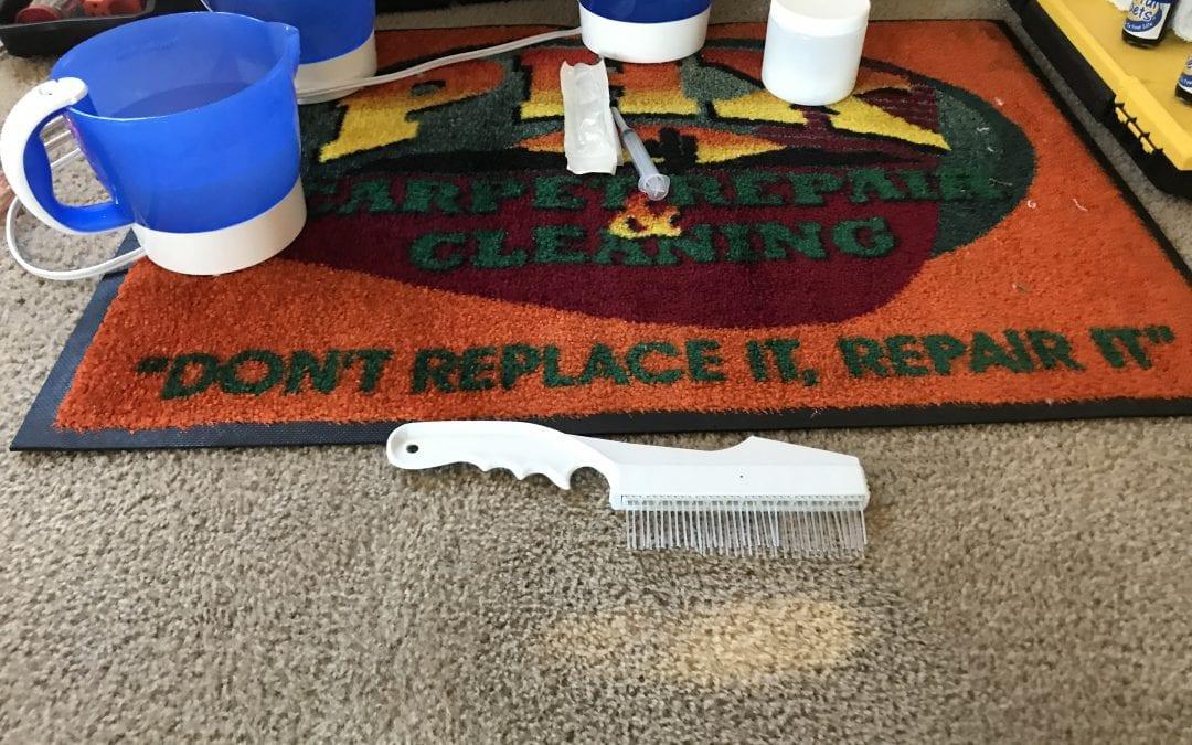 Buckeye, AZ: Carpet Dyeing